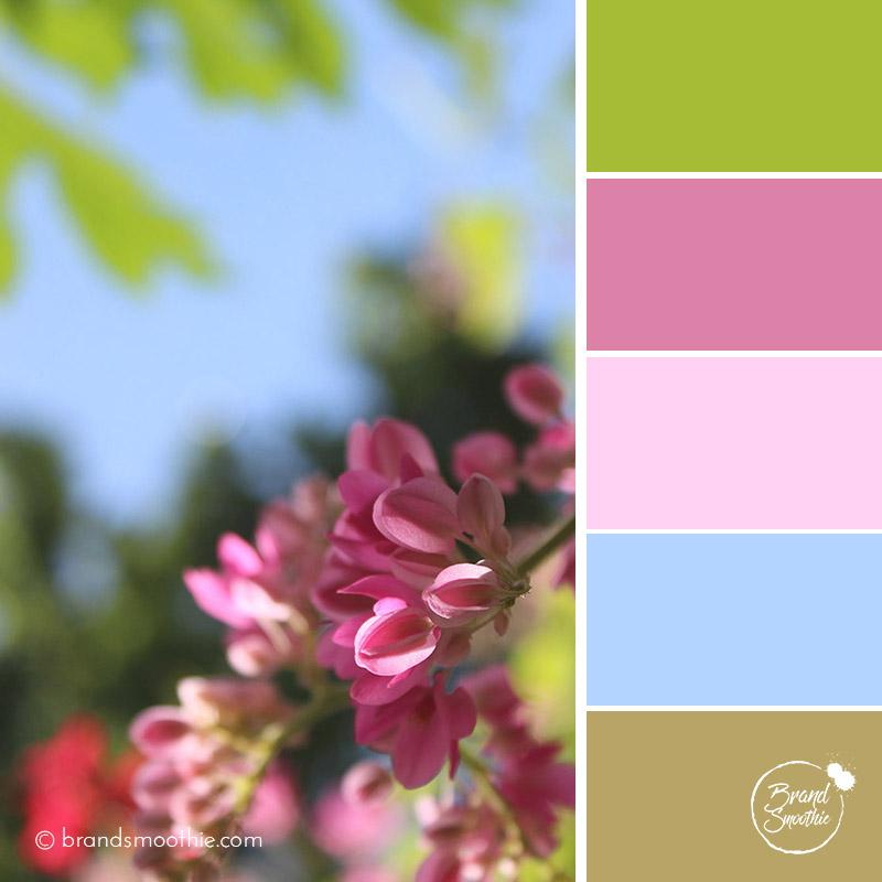 BS Colour Palette summer pastel