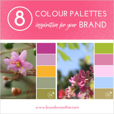 8 Colour palettes inspiration for your brand