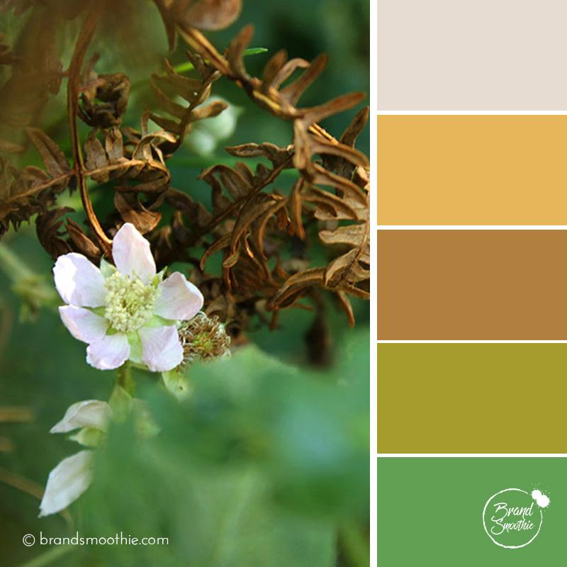 bs-colour-palette-golden-leaves