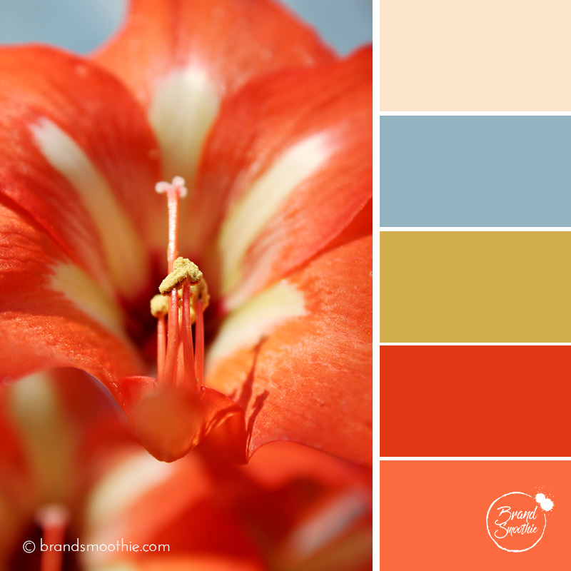 bs-colour-palette-red-lily