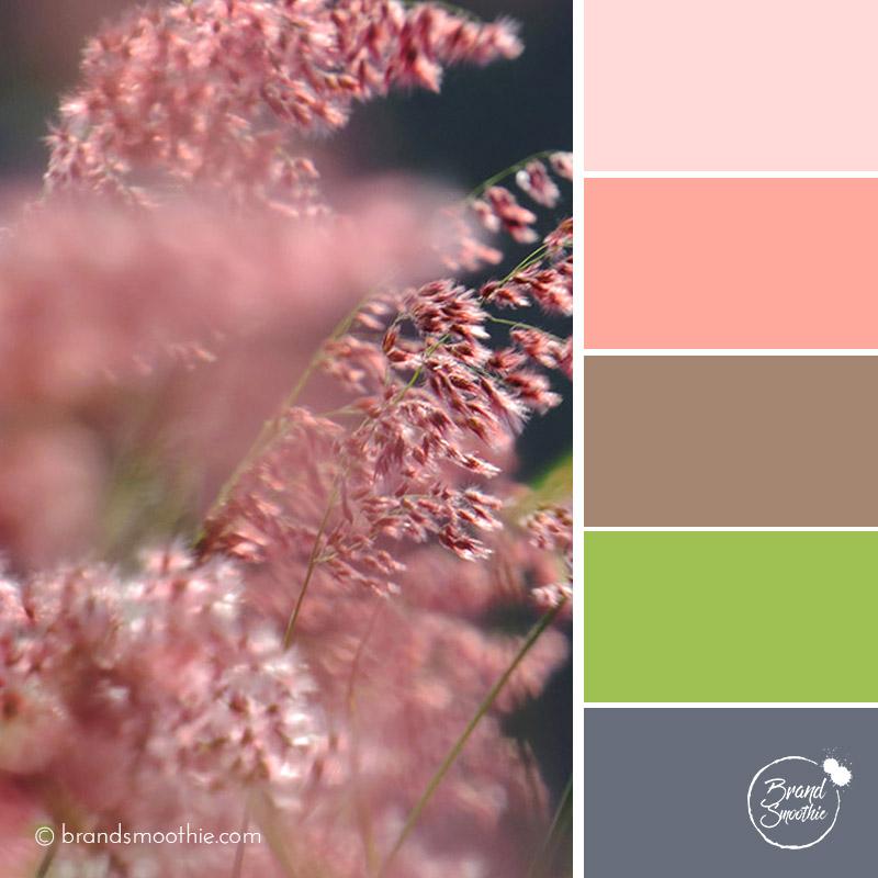 bs-colour-palette-silky-wildflower