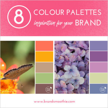 8-colour-palettes-inspiration-for-your-brand-by-brand-smoothie-800px