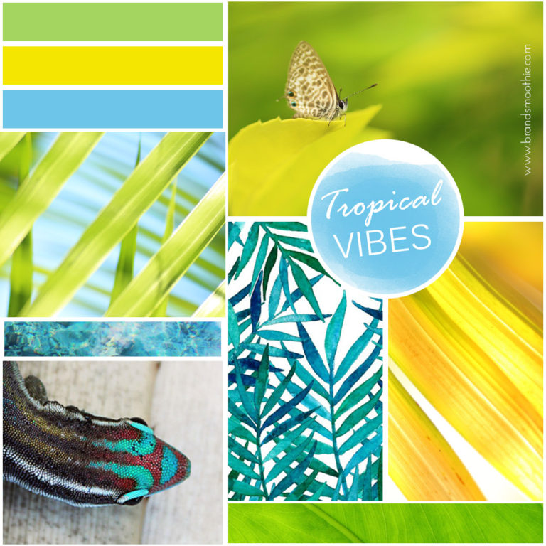 Stephanie Manuel Photography moodboard by Brand Smoothie